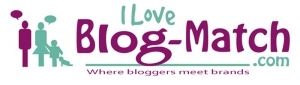 www.blog-match.com